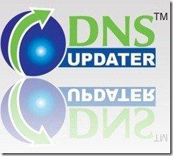 DNS Updater Logo