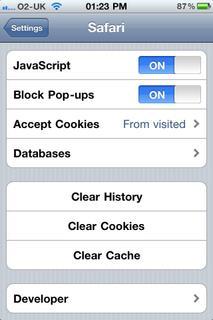 iPod Touch Safari Settings